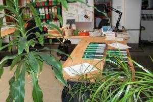 sede Edizioni Green Planner